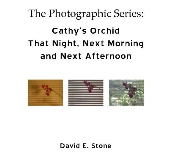 Cover of Cathy's Orchid - That Night, Next Morning and Next Afternoon