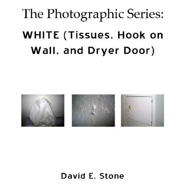 Cover of WHITE_Tissues_Hook on Wall_Dryer Door